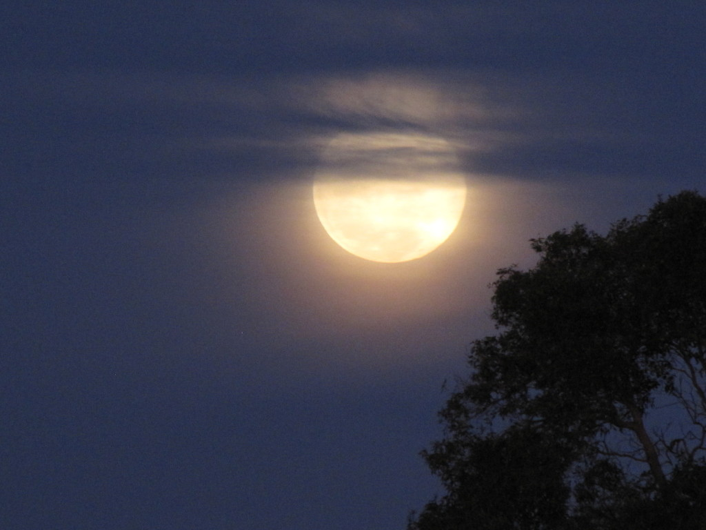 full_moon7