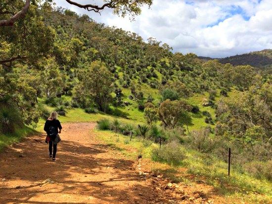 Bells Rapids Walk Trail