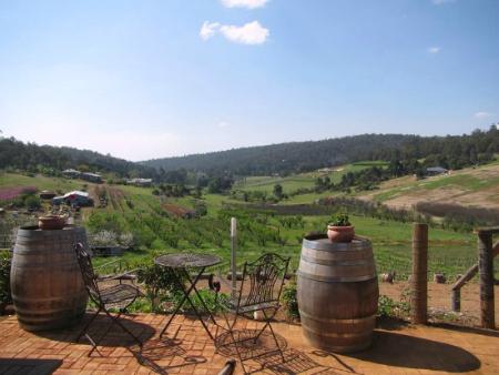 Plume Estate Bickley Valley