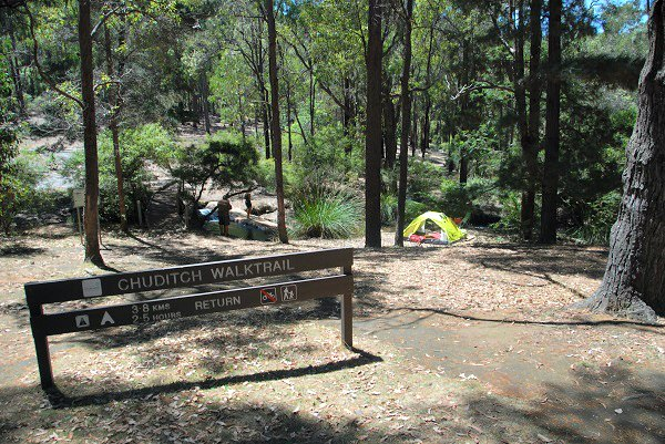 Bushwalking at Lane Poole Reserve