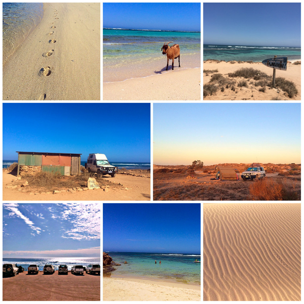 Gnaraloo Collage 2