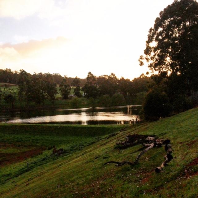 Sunset Glenlynn Cottages