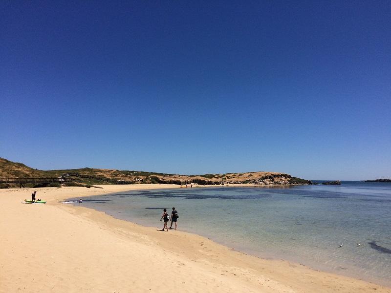Penguin Island Australia