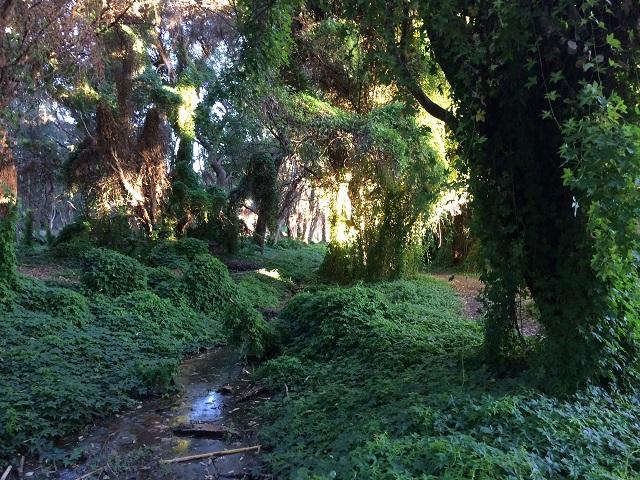 Secret Garden Perth