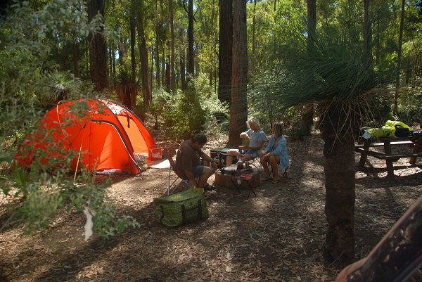 Camping at Lane Poole Reserve