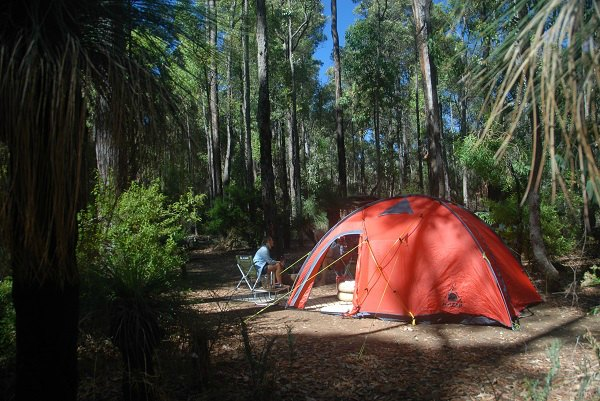 Camping at Lane Poole Reserve Dwellingup