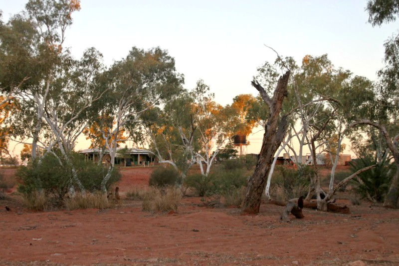 Emu Creek Station