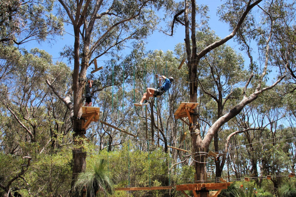 Yanchep Trees Adventure