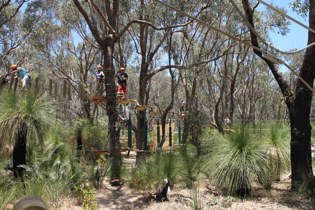 Trees adventure Yanchep