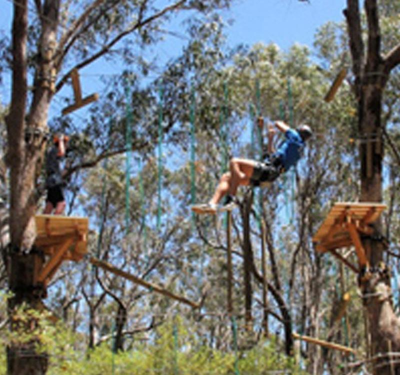 Yanchep Trees Adventure